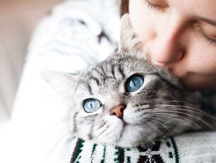 Młoda kobieta przytula kota.