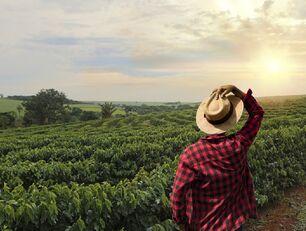 Młody mężczyzna patrzy na ogromne pole.