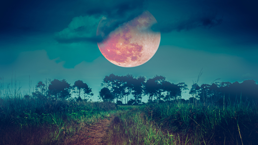 Pełnia Księżyca na zjawiskowym niebie nad polem