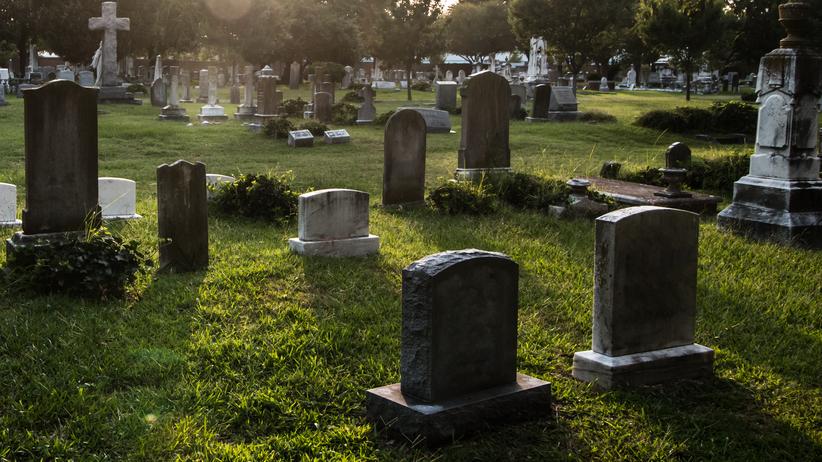 cmentarz we śnie