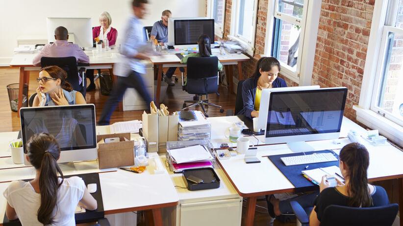 Pracownicy biurowi a trakcie pracy.