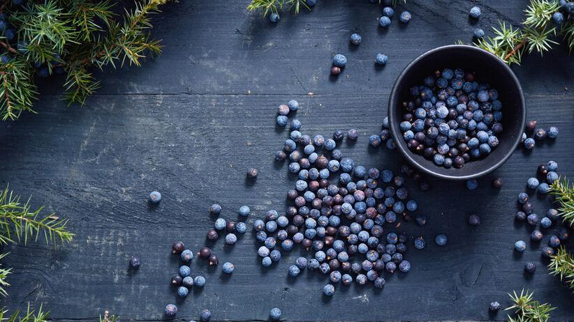 nalewka z jagód