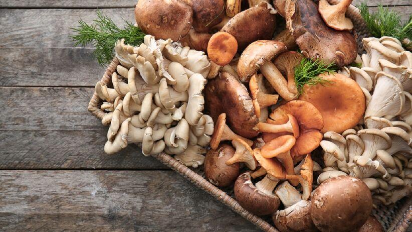 na tacy leży kilka gatunków grzybów