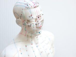 Quiz: ludzkie ciało