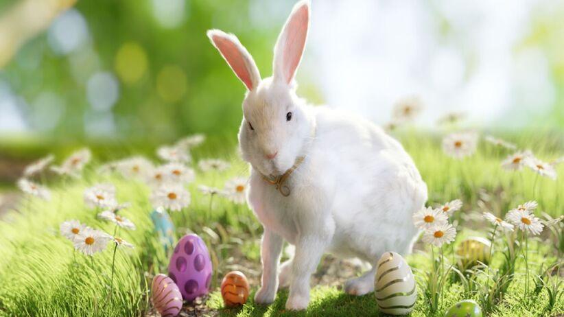 bajka wielknocna króliczek