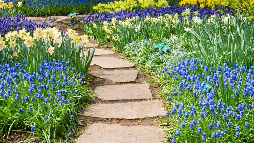 Z czego zrobić ścieżki w ogrodzie?