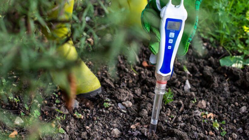 pH gleby ma znaczenie? Jak go sprawdzić?
