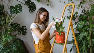 Powstała aplikacja do wymiany roślin. Dzięki niej przygarniesz kwiatka albo się z kimś zamienisz