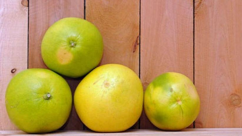owoc pomelo