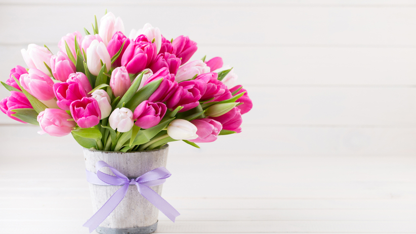 Sen O Tulipanach Dowiedz Sie Co Oznaczaja Tulipany We Snie Styl Zycia