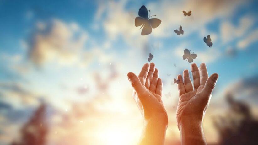 Jakie znaczenie ma symbol motyla?