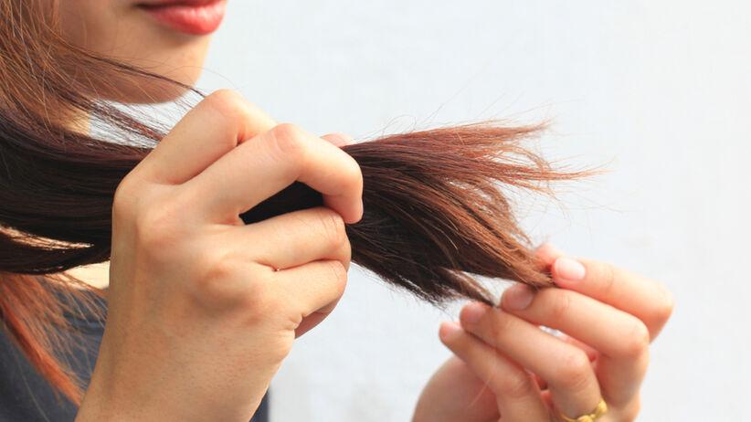 Dziewczyna ogląda swoje wysuszone i matowe włosy