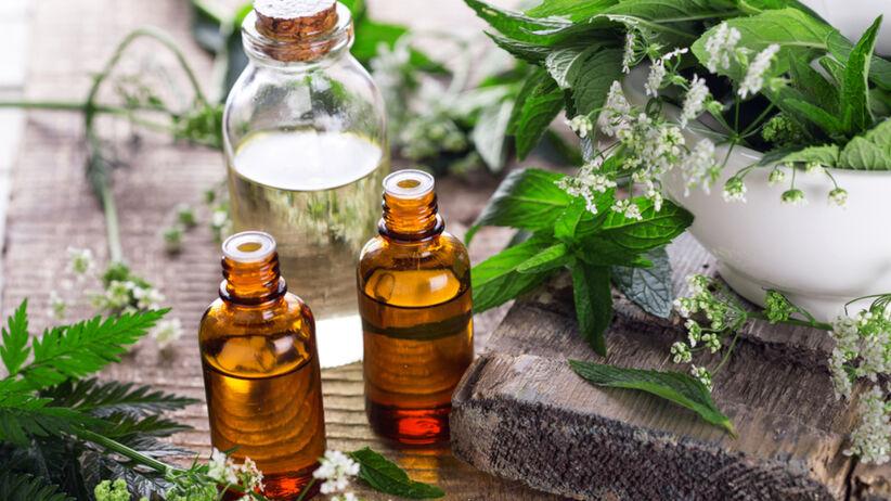 Olejki eteryczne w butelkach stoją na stole pośród różnych ziół