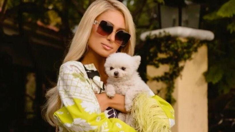 Paris Hilton w kolorowym kombinezonie, okularach przeciwsłonecznych i z małym pieskiem na rękach