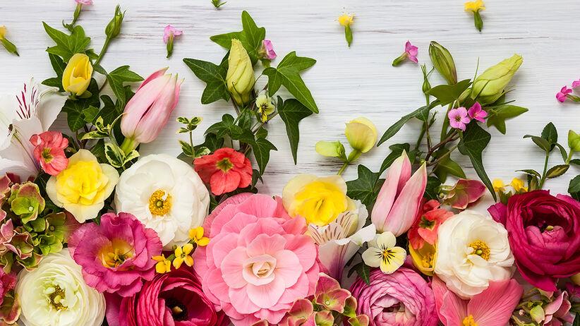 Życzenia na Dzień Kobiet. Czego należy życzyć 8 marca?