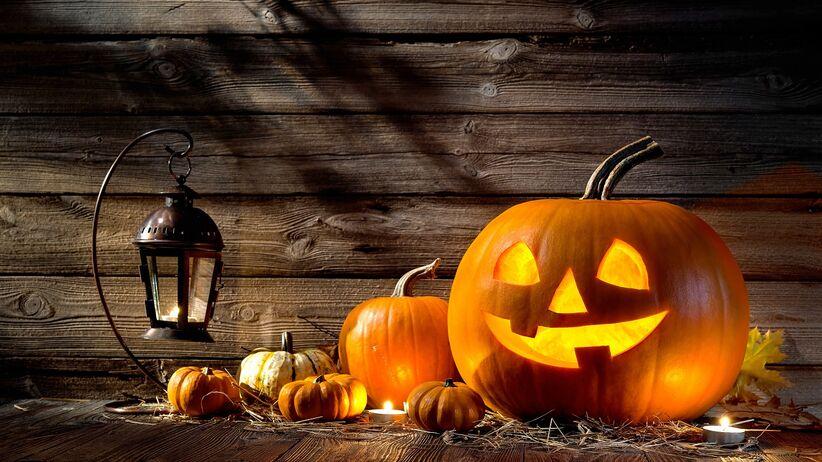 dynia Halloween