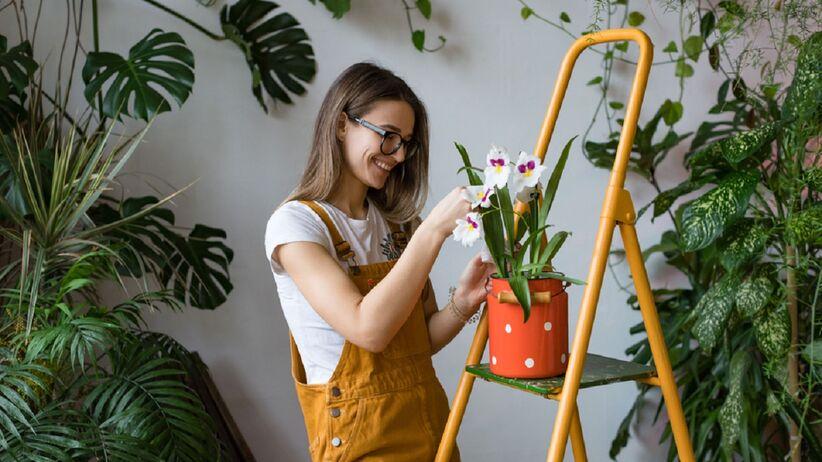 pielęgnacja roślin